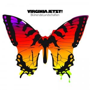 VIRGINIA_JETZT_-_BluehendeLandschaften_Cover_800