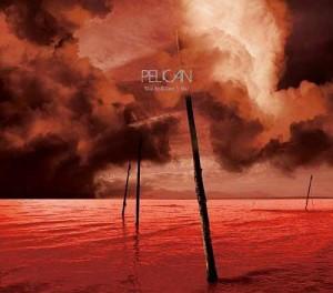 Pelican_wwactn-cover