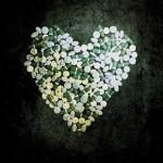 """Alkaline Trio – """"This Addiction""""  VÖ: 19.02.10"""