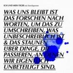 """Ich und mein Tiger – """"Was uns bleibt"""" – Review"""