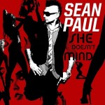"""She Doesn't Mind"" von Sean Paul: Meistgesuchter Titel bei Google"