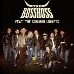 The Bosshoss –  Gold für DOS BROS