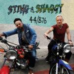 Sting geht mit Shaggy auf Tour