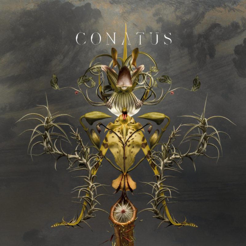 "Überlebenswille – Joep Beving bringt das neue Remix-Album ""Conatus"" heraus"